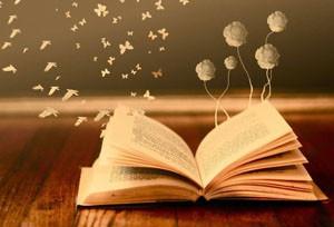 Вебинары и книги